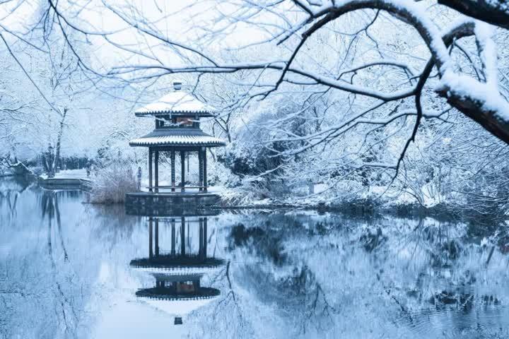 今日大雪!晚来天欲雪,能饮一杯无?