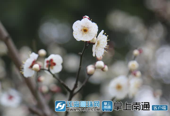 5B2A3887_副本.jpg
