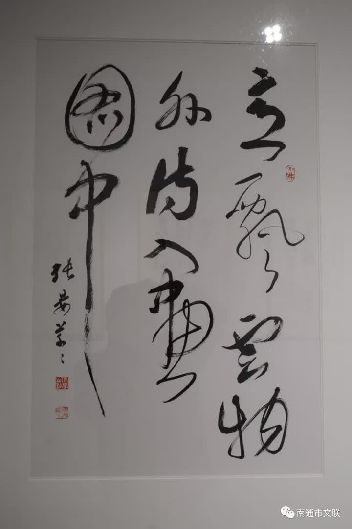 南通百余名艺术家捐力作助力防疫战(捐赠作品展:书法系列)