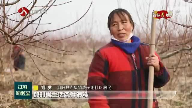 """【新春走基层】泗阳县卢集镇的""""桃花源"""" 打工"""